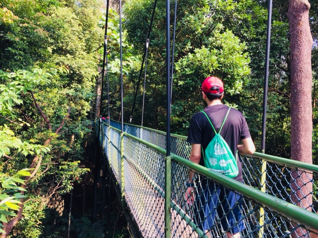 Lab outing at MacRitchie Tree Top walk (2018)